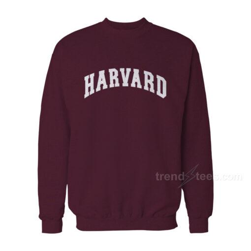Harvard Recreation Sweatshirt Cheap Trendy Clothes
