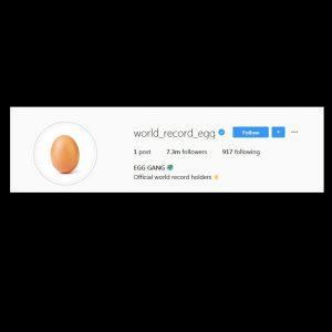 World Record Egg Instagram T-Shirt Unisex