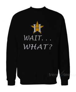 Houston Astros Wait What Sweatshirt